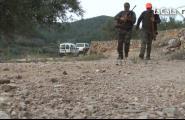 A la caça del jabalí