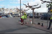 Ports inicia les obres d'urbanització a l'entorn de la llotja del port