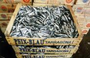 Els pescadors i el Govern es reuneixen per salvar el sector del peix blau