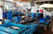 La Confraria de Pescadors instaura un nou sistema de gestió de recollida de caixes de peix