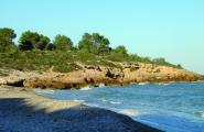 Hissada de les dues banderes del distintiu platges verges
