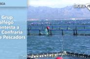 El Grup Balfegó contesta a la Confraria de Pescadors