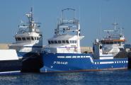 Els tonyinaires catalans lluiten a Agadir per l'increment de la quota pesquera.