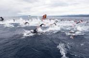 Torna l'emoció de la natació en aigües obertes amb la Tuna Race