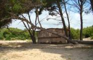 L'Ajuntament vol millorar les guinguetes de les platges