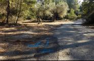 L'Ajuntament ha adjudicat els treballs de pavimentació del Camí de les Guàrdies