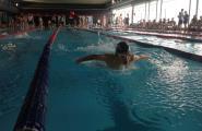 La natació calera a la recerca de podis a la final de Catalunya