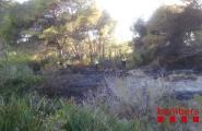 Els Bombers van extingir un petit incendi forestal a Calafat