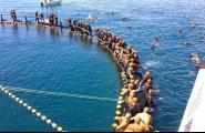 Arriba una nova edició de la Tuna Race Balfegó