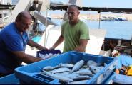 L'arrossegament torna a la mar amb descens de captures i augment de preus