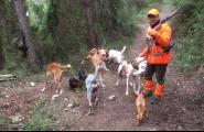 Diumenge passat es va iniciar la mitja veda de caça que durarà fins el 10 de setembre